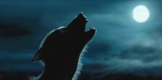 Werewolf is alive
